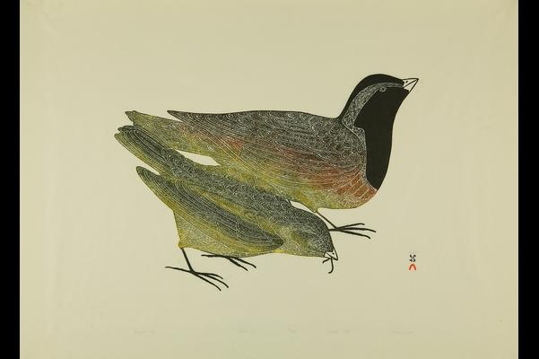 Northern Narratives: Cape Dorset Prints