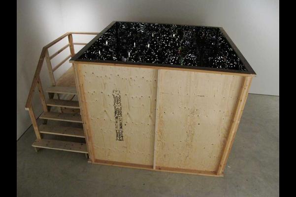 installation view 1, Death by Landscape