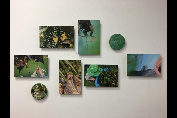 Linda Renaud Fisher.Cluster, 2020-2021,infused photo on aluminum ,27 x 43 cm